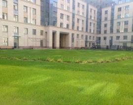 Эксплуатируемые кровли дворов  Многопрофильной Клиники (МПК) Военно-Медицинской академии, Санкт-Петербург