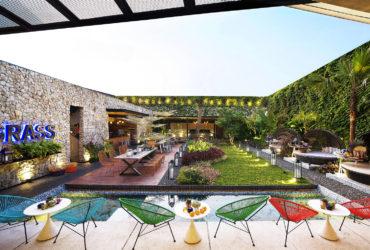 Кафе на крыше в тропическом раю