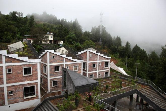 Дома с озеленением вид сверху | Зеленые крыши