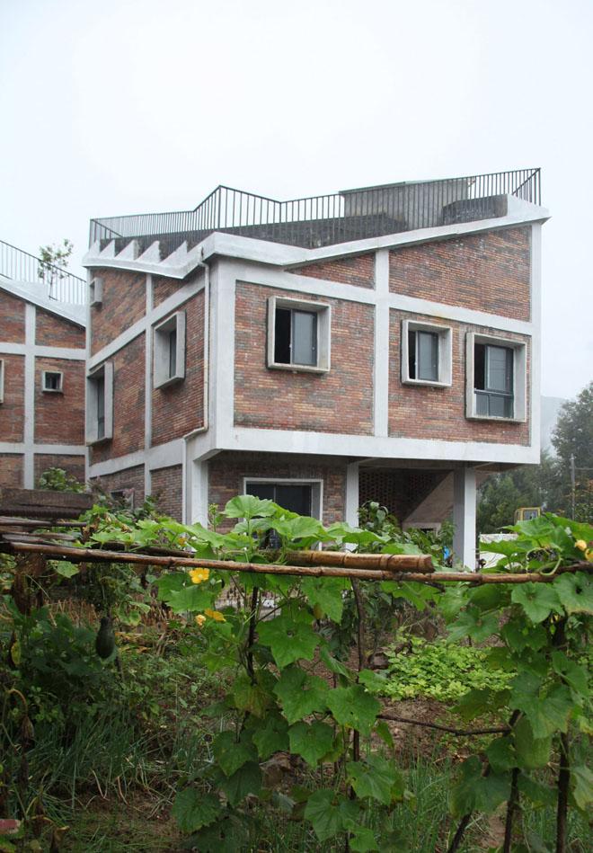 Вид на дом | Зеленые крыши