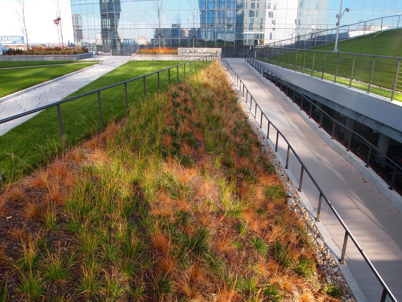 Озеленение в Филадельфии | Зеленые крыши