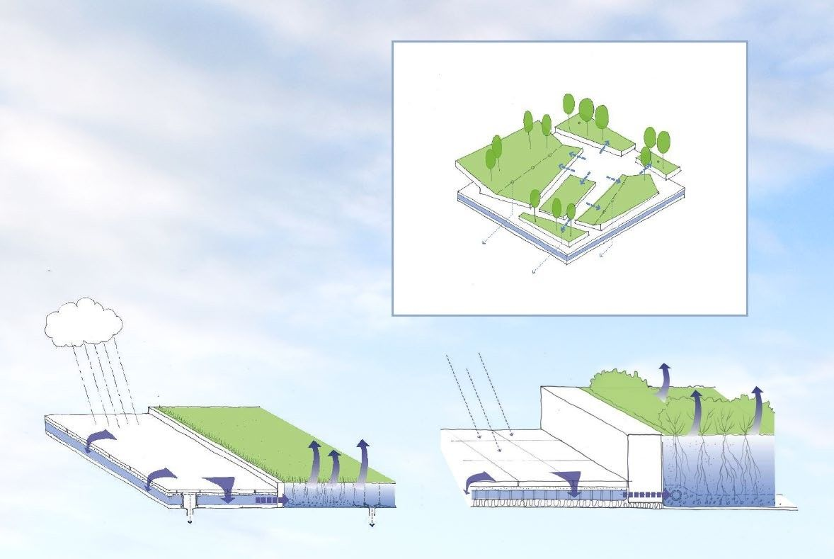 Проект озеленения строений в Филадельфии | Зеленые крыши
