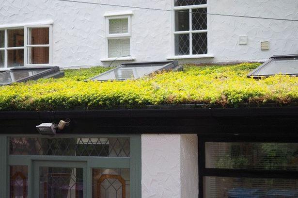 Зеленая кровля особняка в Ливерпуле | Зеленые крыши