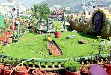 ВВиджаяваде(Индия) развивают озеленение крыш