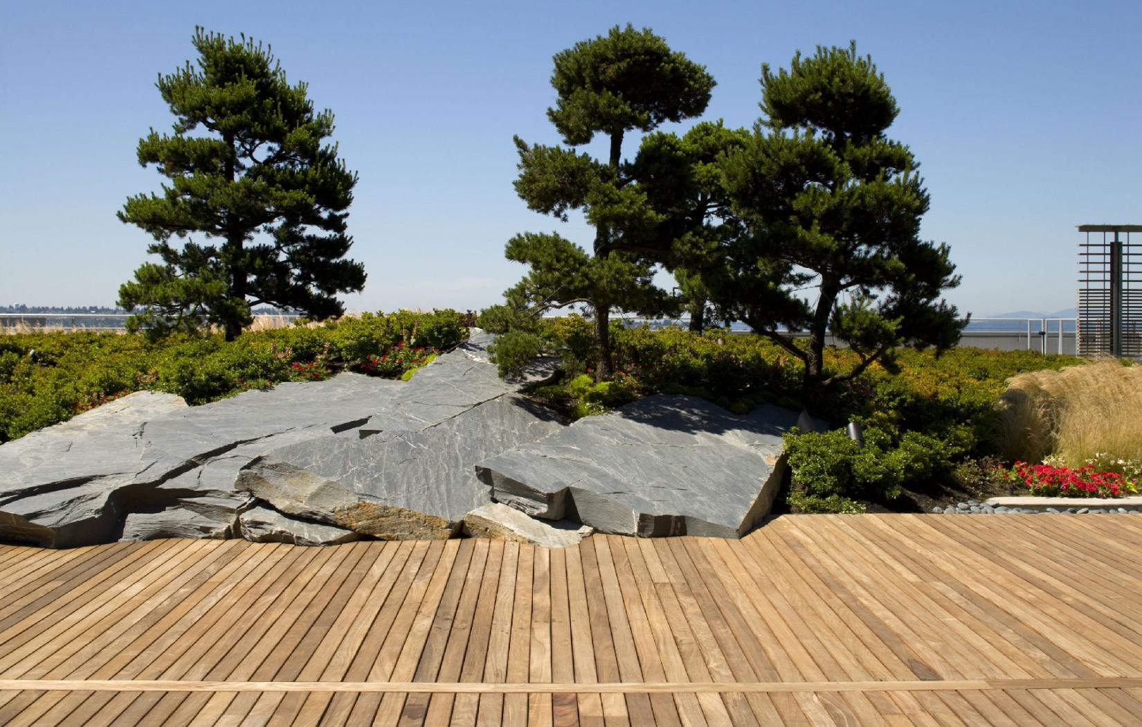 Конструкция сада на крыше | Зеленые крыши