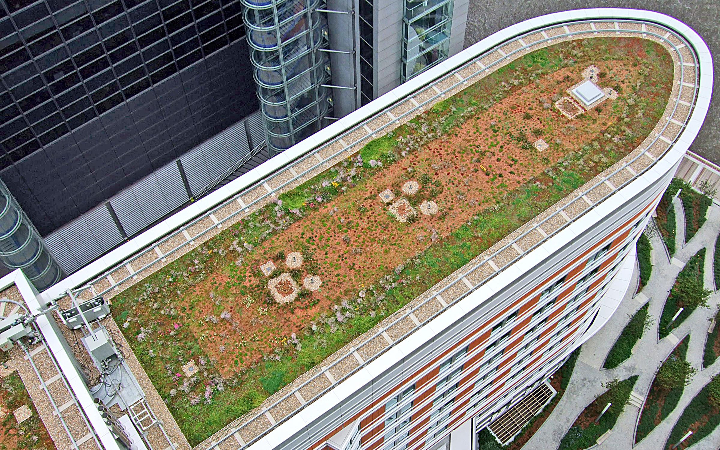 Radisson - дренажная система отеля | Зеленые крыши