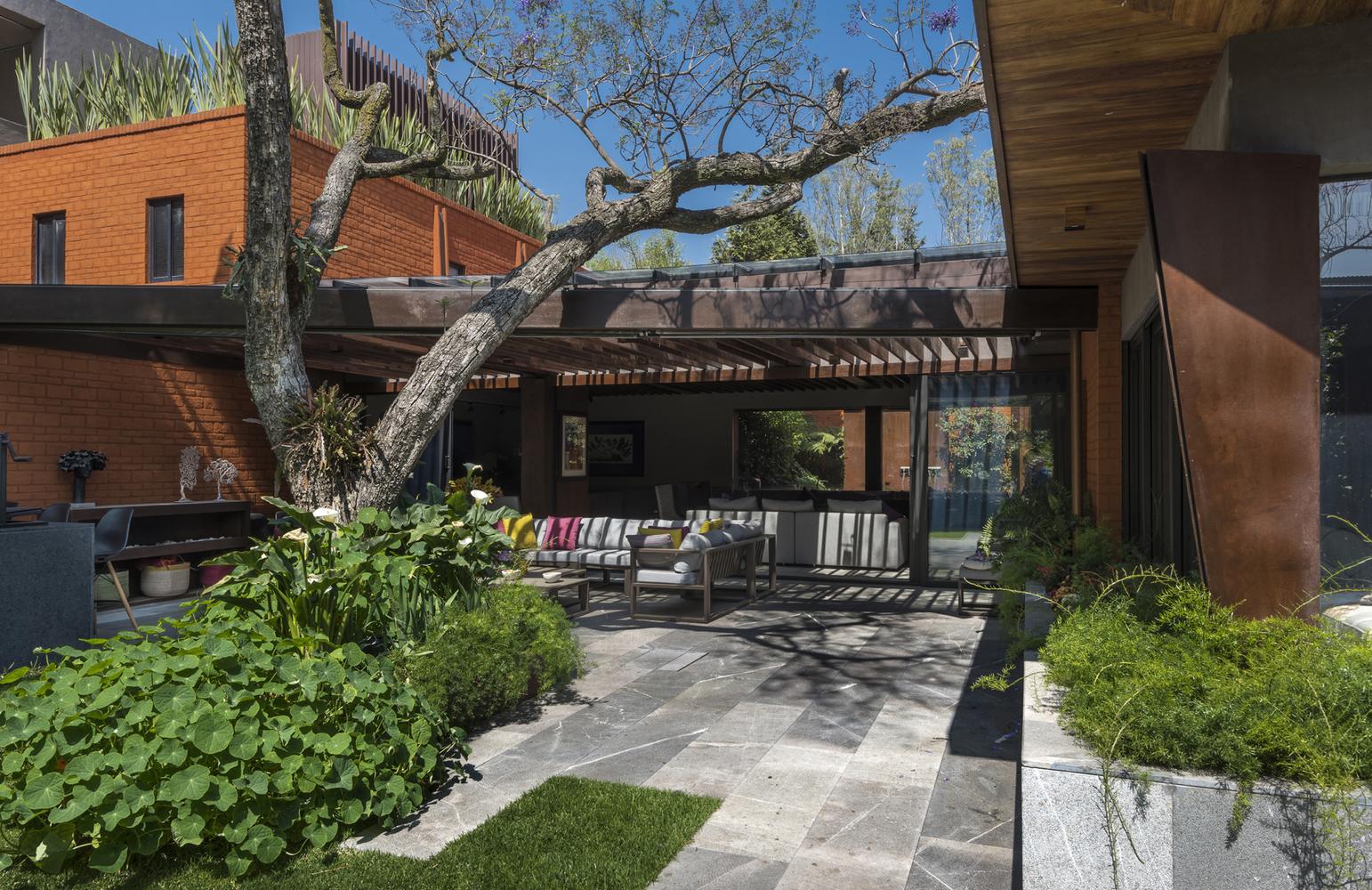 озеленение территории возле дома | Зеленые крыши