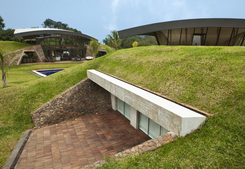 Озеленение пространства | Зеленые крыши