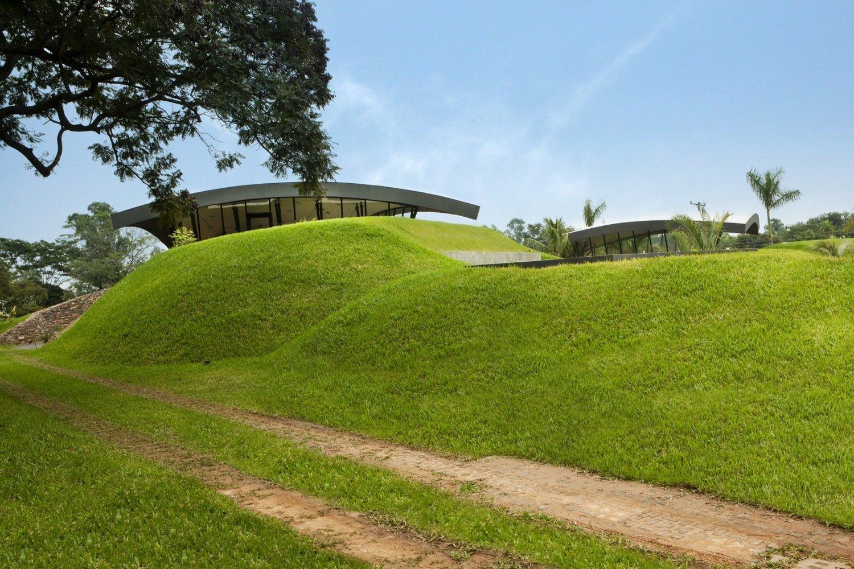 Озеленение пространства возле строения | Зеленые крыши